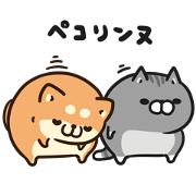 ボンレス犬&猫×ライブドアニュース