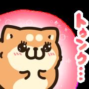 LINE無料スタンプ | タイムラインで使える★ボンレス犬と猫 (1)