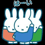 LINE無料スタンプ | Pinkoi × miffy (1)